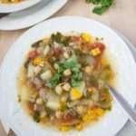 Shurpa Veggie Meat Soup